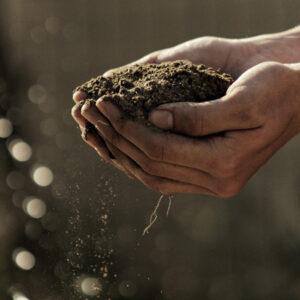 ET2. O enfoque ecosocial, os espazos rurais como territorios de vida.