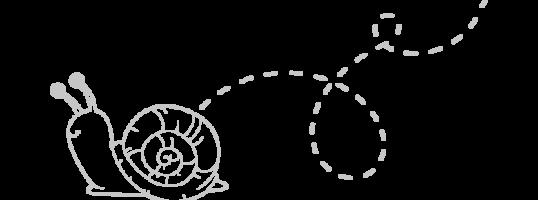 caminos-caracol